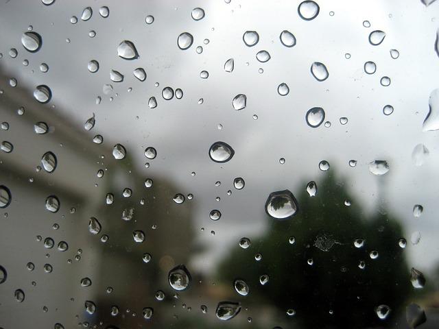 雨天中止!ジョンソンは明日にスライド!